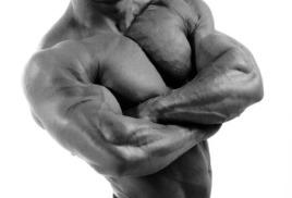Содержание тестостерона в натуральных добавках